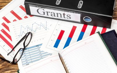 What are your options for small business grants?